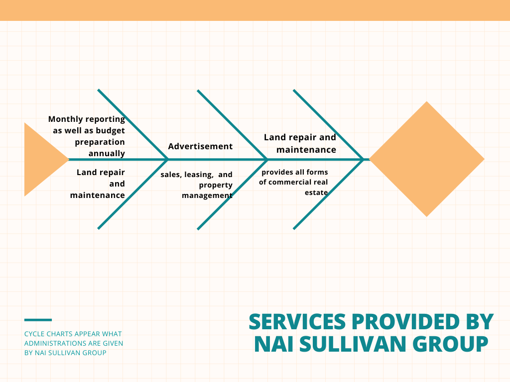 services provided by NAI sullivan group
