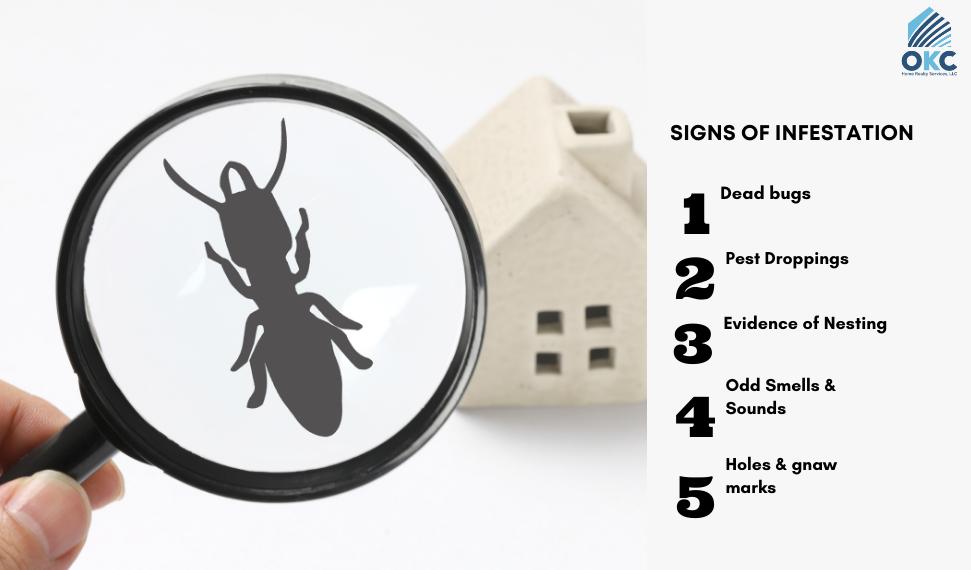 signs of pest infestation